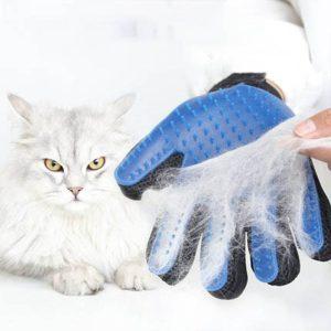 rękawica do czesania psa kota