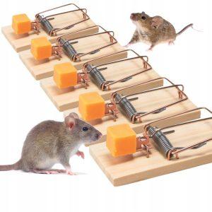 pułapka na myszy drewniana